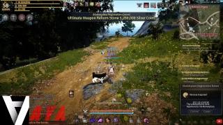 [ LIVE ] Black Desert online NA - Savage Rifi