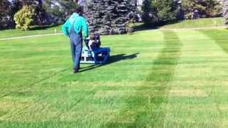 рулонный газон после укладки(, 2014-12-07T17:29:24.000Z)