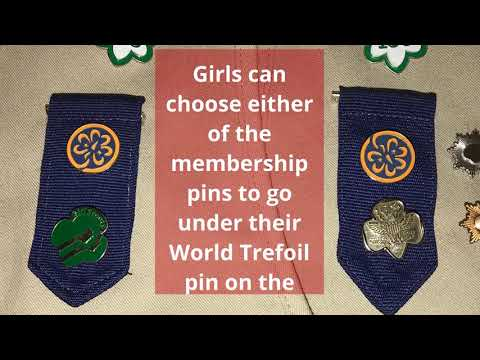 Girl Scout Cadette Insignia And Placement