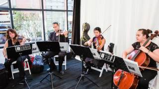 All You Need Is Love - String Quartet - Eliana Strings