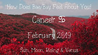 ♋ Cancer: Your partner is ROLLING in the DEEP of their Emotions! 💜💜👈