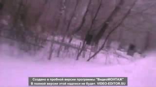 Парни катались на санках по кладбищу в Тобольске - декабрь 2015(Подробности ищите на НАШЕМ сайте: ..., 2015-12-11T11:02:15.000Z)