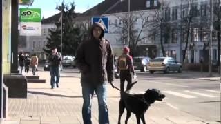 """Филипп Киркоров """"Я себе придумал эту жизнь"""" док.фильм"""