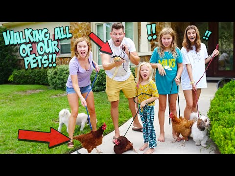 we-tried-walking-all-of-our-16-pets-at-one-time!!