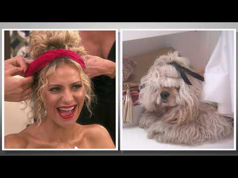 Katie Sommers - Puppies Wine & Snacks Podcast: Dissecting This Week's Bravo TV Shows