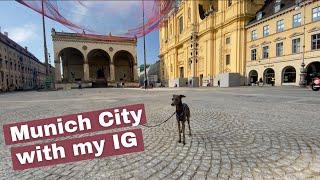 FMA: MUNICH CITY with my ITALIAN GREYHOUND