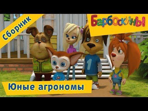 Барбоскины 🍅 Юные агрономы 🍏Сборник мультфильмов