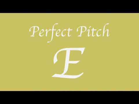 Perfect Pitch E (New)