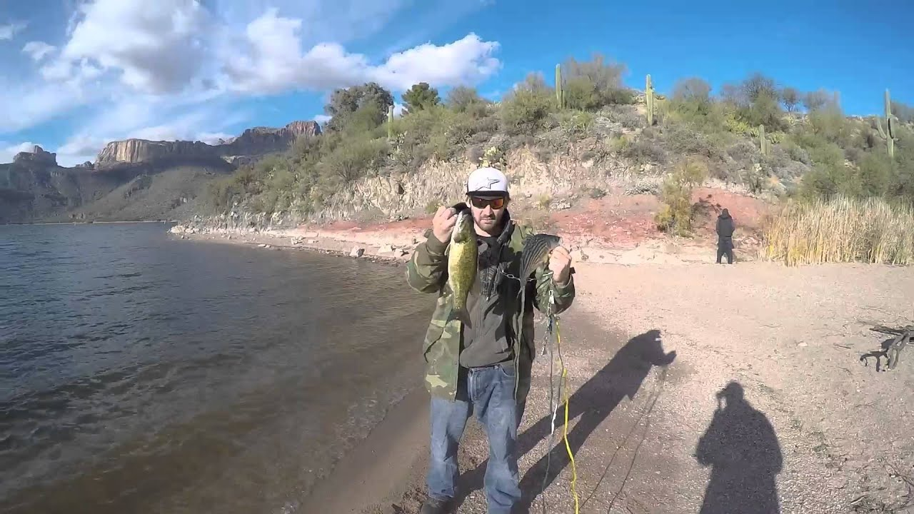 Arizona fishing apache lake youtube for Fishing lakes in arizona