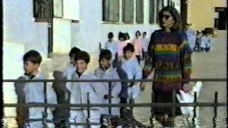 CASTAÑAS 1993