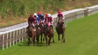 Vidéo de la course PMU PRIX DE L'ILET OSCAR