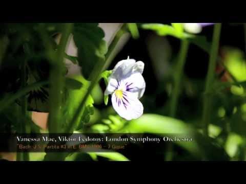 Vanessa Mae, Viktor Fedotov, London Symphony Orchestra - Bach, J.S. Partita #3 in E, BMV 1006