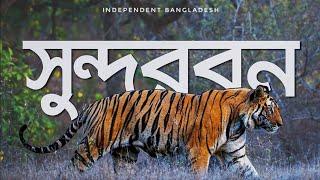 সুন্দরবন ভ্রমণ অভিজ্ঞতা | The Sundarban Travel | World's Largest Mangrove Forest!