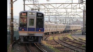 【希少な急行:和歌山港行き!】 南海 和歌山港線 を撮りに行ってきました!