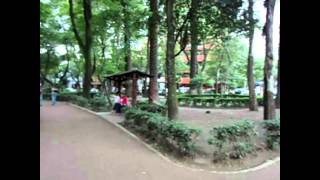 Tokio ska paradise orchestra.mp4