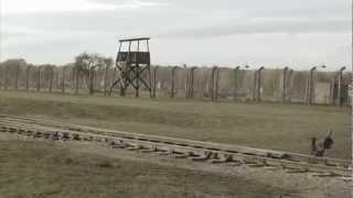 The untold story: Roma Holocaust