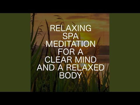 Wellbeing Spa Relaxation Music