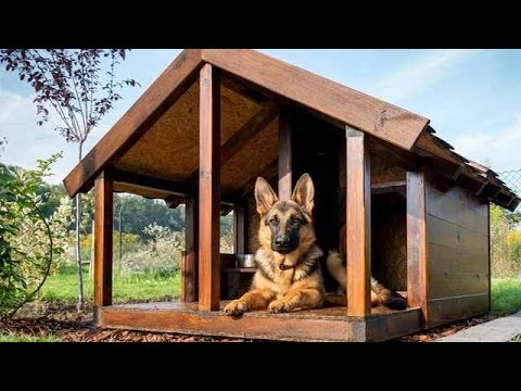Будки для собак из дерева своими руками чертежи