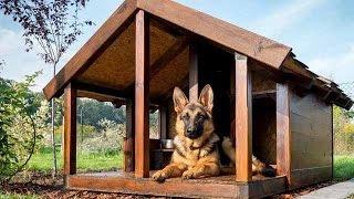 Будка для собаки: 50 вариантов дизайна