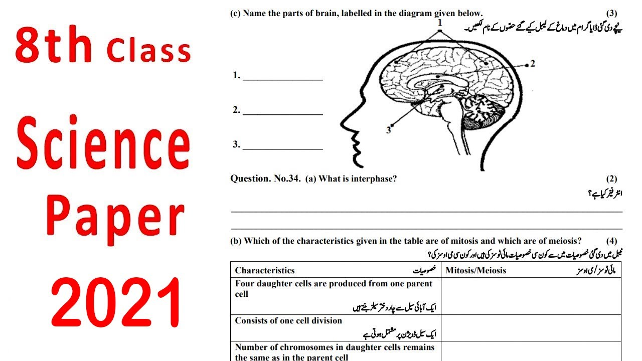 8th class science paper 2019