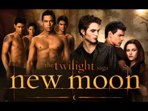 twilight saga new moon book report The twilight saga : breaking dawn  it would have to be split into two films because the book is just  and that its running time is equal to twilight, new moon.