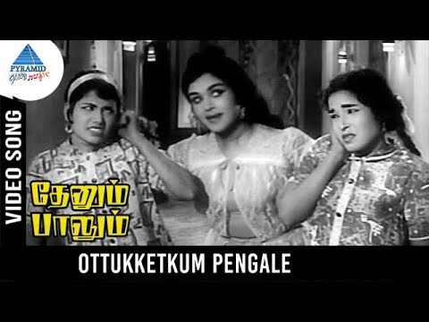 Thenum Paalum Tamil Movie Songs | Ottukketkum Pengale Video Song | Sivaji | Saroja Devi | MSV