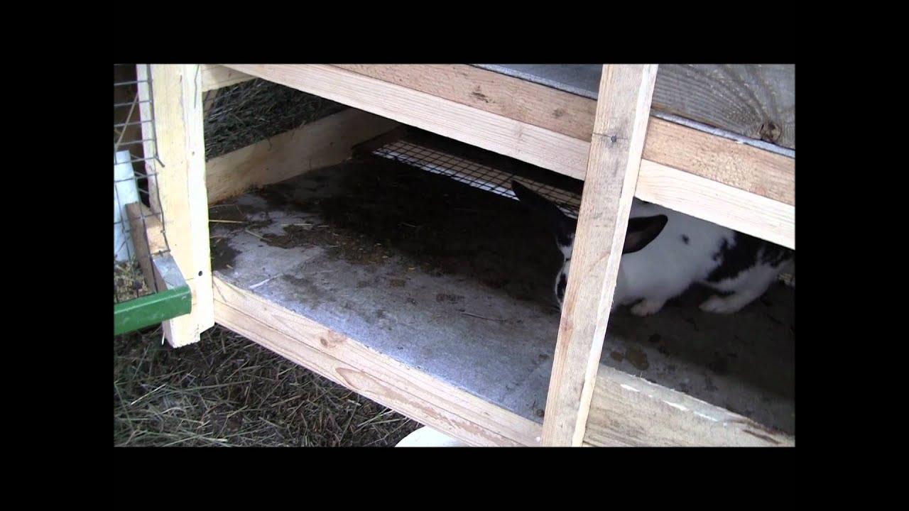 схема постройкимини фермы для кроликов