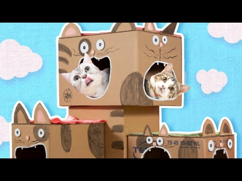 DIY Cat House - How to Make a Cat Tree from Cardboard   Easy Cat Furniture & Craft Projects