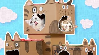 DIY Cat House  How to Make a Cat Tree from Cardboard | Easy Cat Furniture & Craft Projects