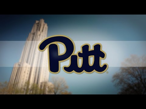 Welcome to Pitt (2017)