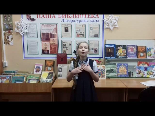 Изображение предпросмотра прочтения – МарияБорзенко читает произведение «Вот север, тучи нагоняя…» А.С.Пушкина