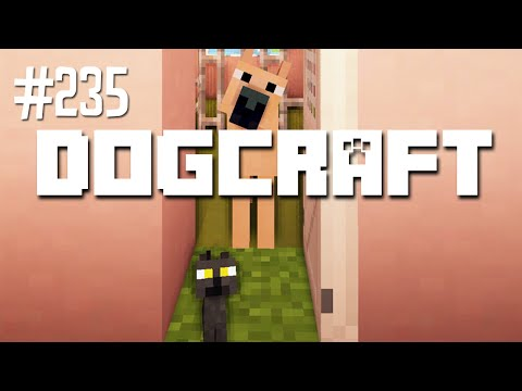 BRINGING HOME BUTTERCUP - DOGCRAFT (EP.235)