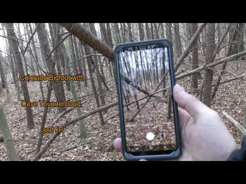"Maryland Bigfoot World Found ""4k"""