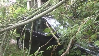 Tree Falls Down on Car in Sumter Thanks to Florence