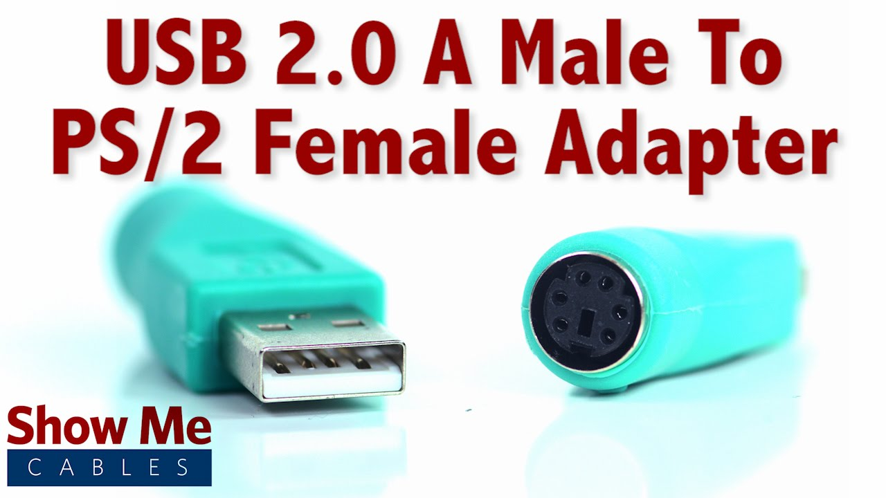 easy to use usb 2 0 a male to ps 2 female adapter use an older mouse on usb 3508 youtube [ 1280 x 720 Pixel ]