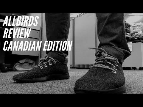 Allbirds Review