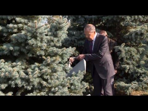 Как связаны США и чахлая ель в Армении: наблюдение Сергея Лаврова