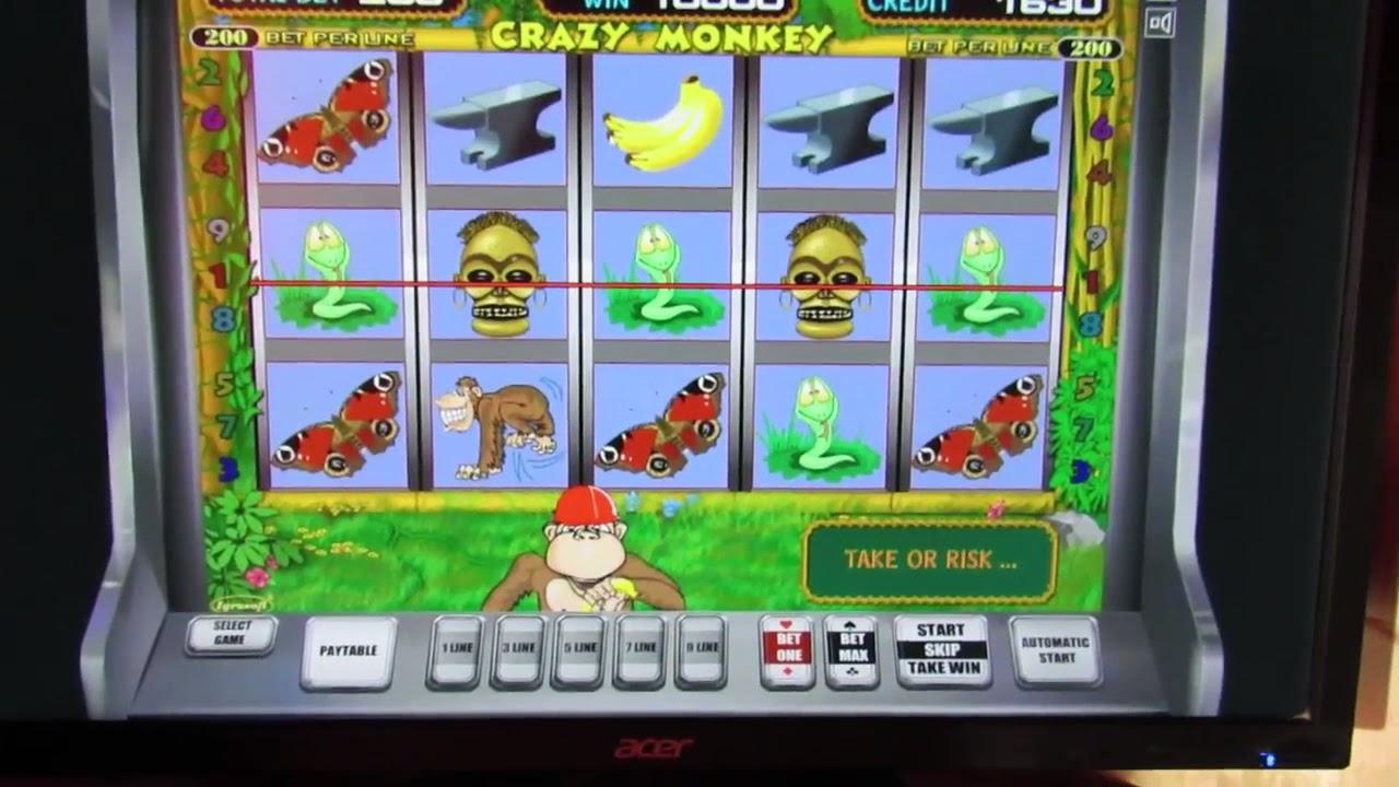 казино в кс гоу