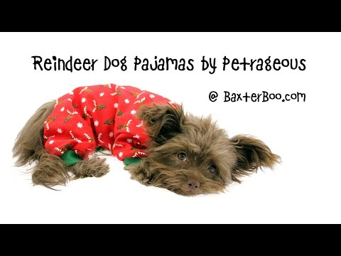 Reindeer Dog Pajamas by Petrageous