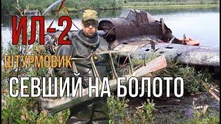 ИЛ-2, Штурмовик, упавший в болото... Памяти погибшим лётчикам посвящается.