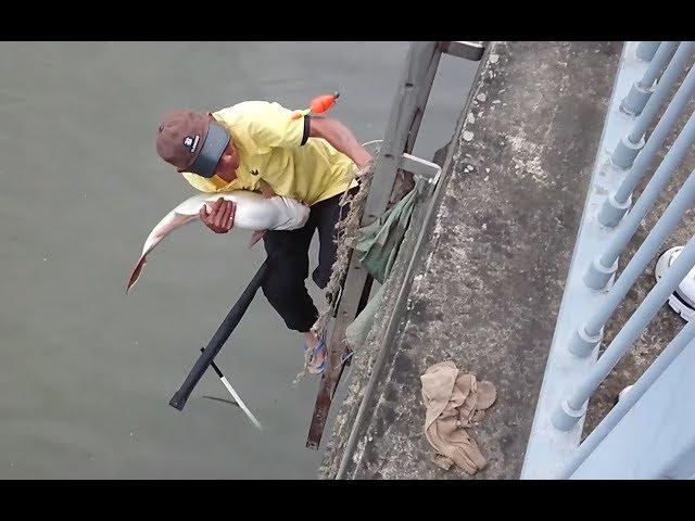Màn vớt cá kiên nhẫn nhất Sài Gòn gây ức chế các cần thủ