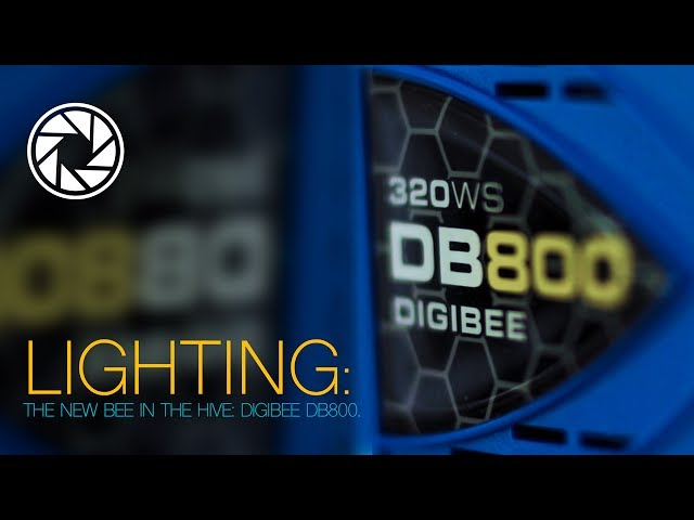 Lighting: The new BEE in the Hive - DigiBee DB800
