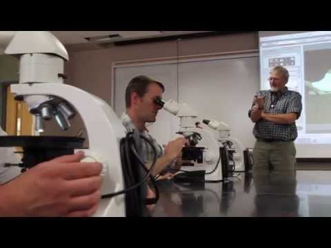 Petroleum Geology | Western State Colorado University