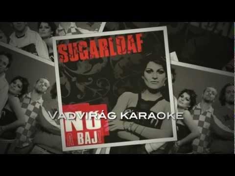 Sugarloaf - Vadvirág karaoke alap (official)