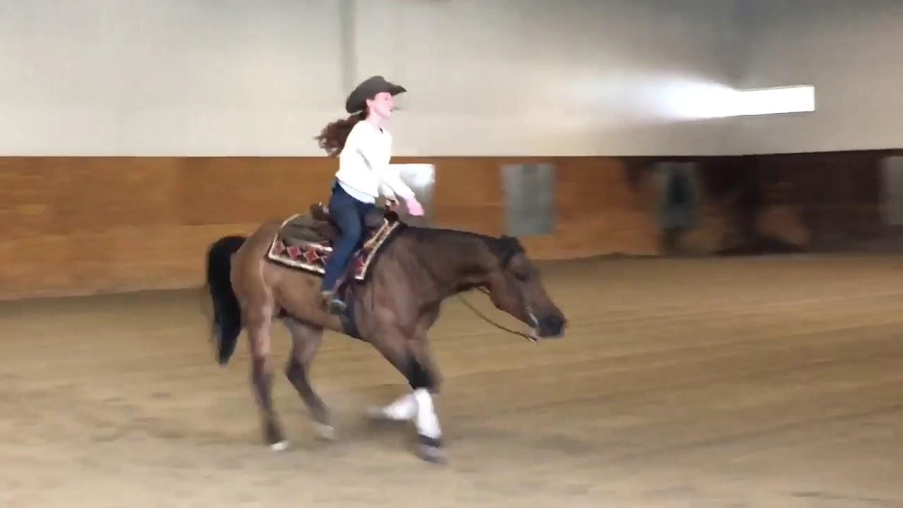 Lil Gun N Rum Islide Performance Horses