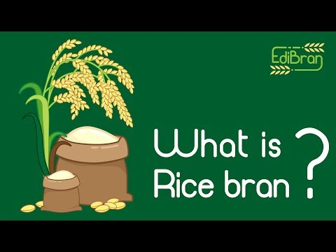 What is Rice bran?