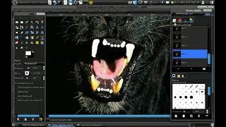 Урок Gimp. Как отбелить зубы. (!HD!)