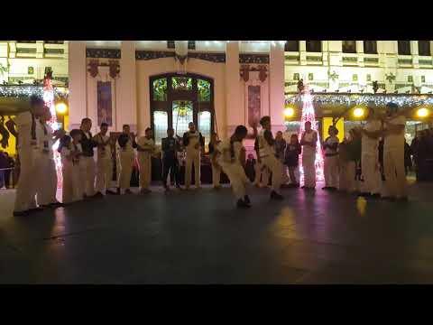 videos de capoeira mp4