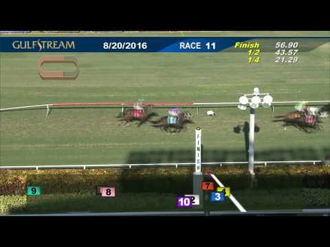 Gulfstream Park Race 11 | August 20, 2016