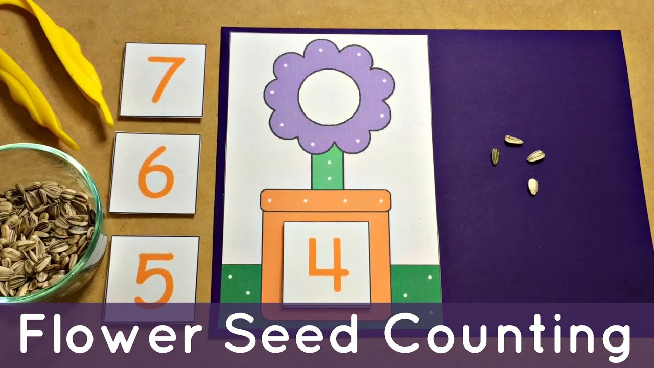Flower Seed Counting - Preschool Math Center and Fine Motor Activity ...